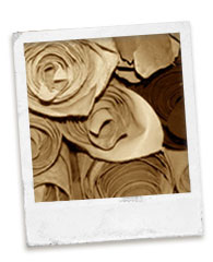 cuir-matières-nobles